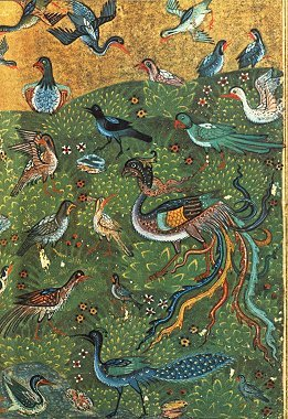 the conference of the birds bird parliament attar farid ud din